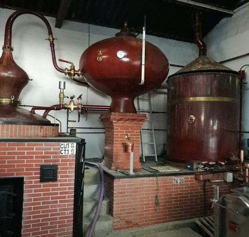 visite-guidee-cognac